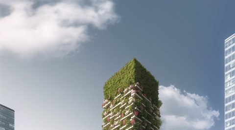 Green solution to China city pollution