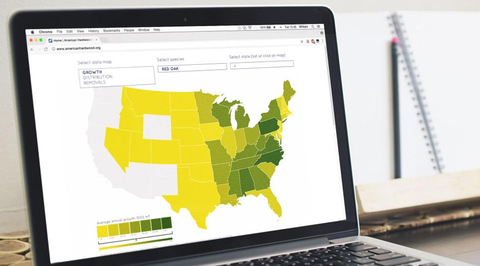 AHEC launches new website featuring Interactive Forest Sustainability Map