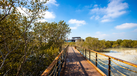In pictures: Jubail Mangrove Park, Abu Dhabi's latest ecotourism project
