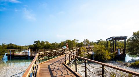 Australian firm GHD designs first of its kind mangrove park in Abu Dhabi