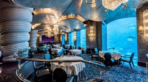 Dubai's fascination with aquariums