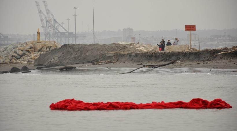 Kochi-Muziris Biennale fifth edition to be curated by Shubigi Rao