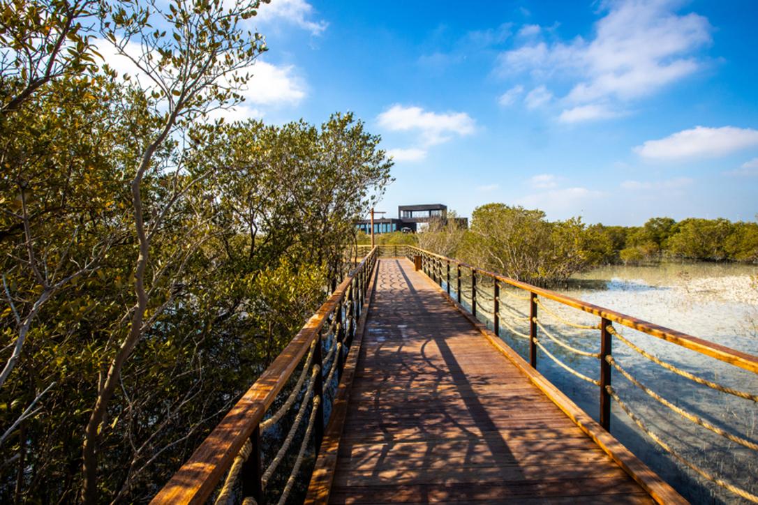 Jubail Mangrove Park, Abu Dhabi's latest ecotourism project